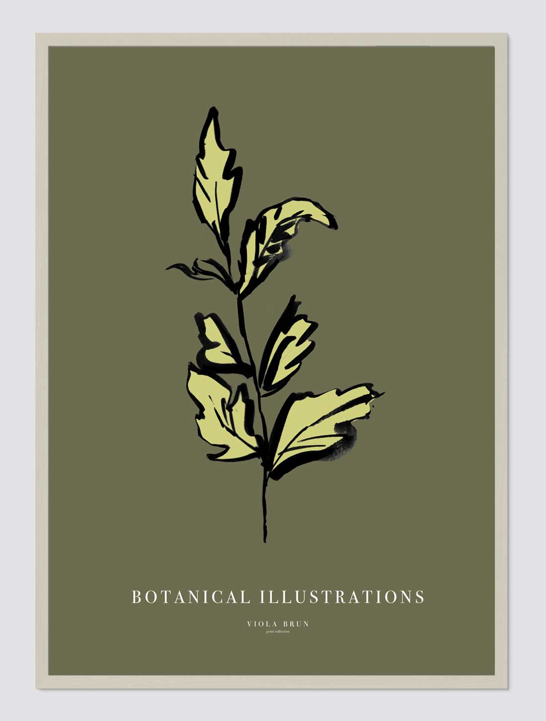 Botanical Illustrations (Leaf)